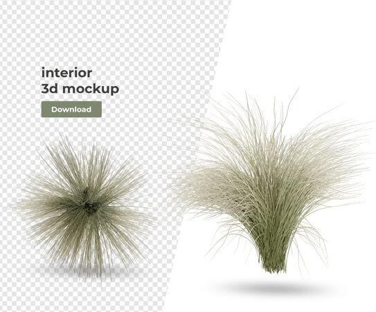 盆栽装饰与室内设计