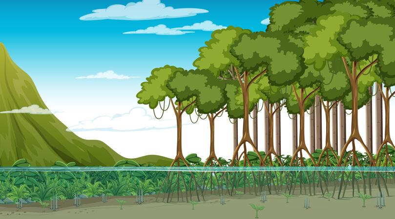 白天的红树林自然景观 卡通风格